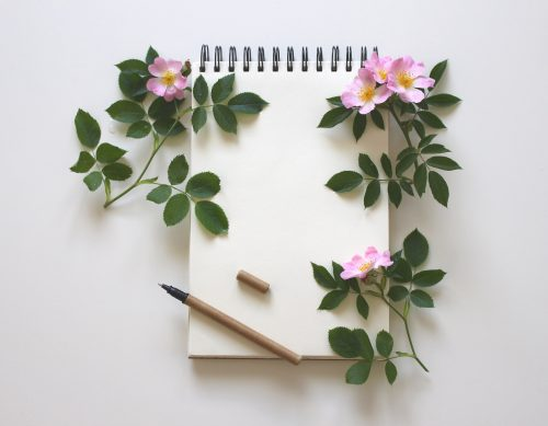 bloggers-notebook